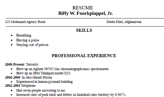 bad resume example