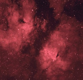 IC 1318 in Cygnus