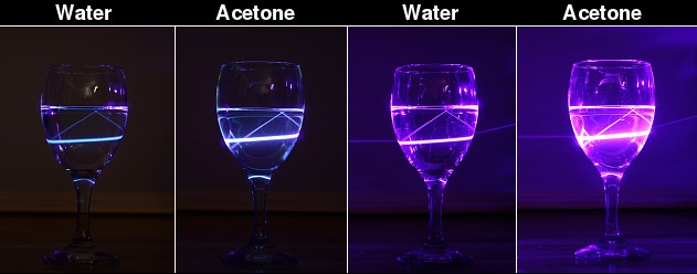 Ultraviolet photography | randombio com