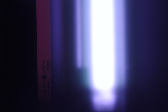 Shortwave Ultraviolet Photography Randombio Com